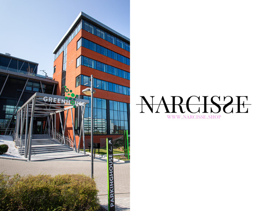 Logo Narcisse shop (met hub)