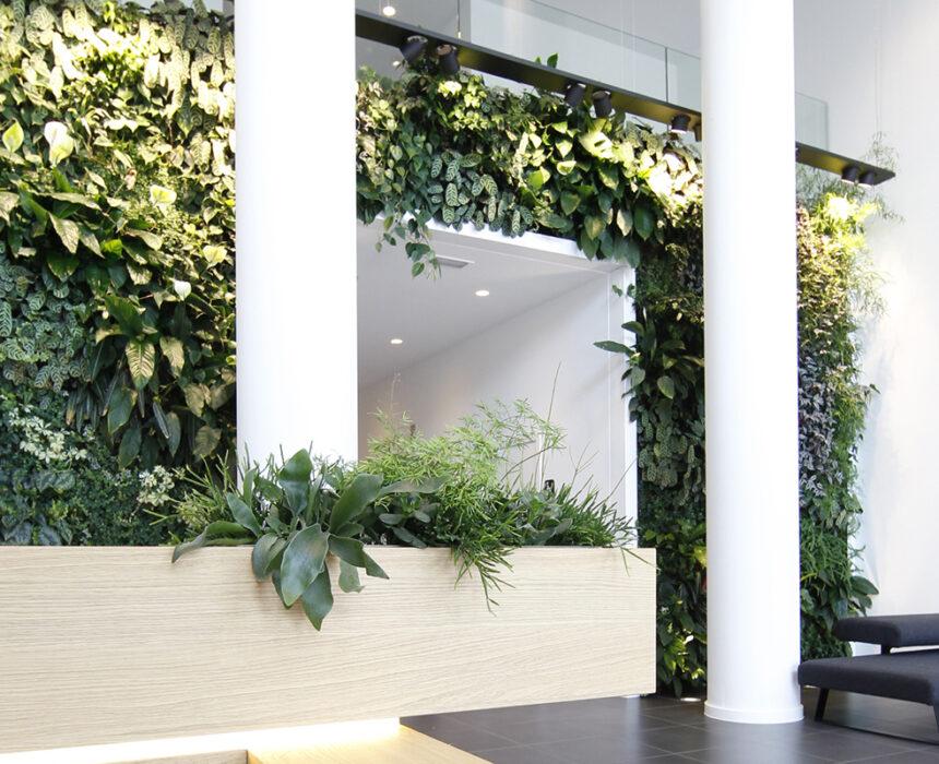 Entree Greenhouse Mechelen